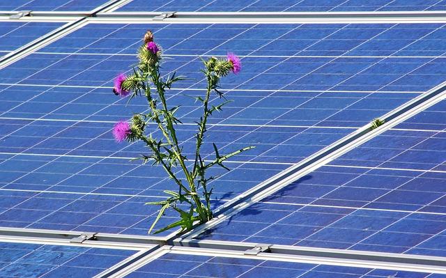 Solarzellen und Umweltschutz